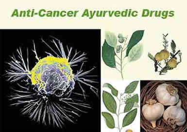 cancer-cells-ayuvedic-herbs