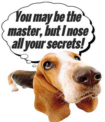 i nose your secrets