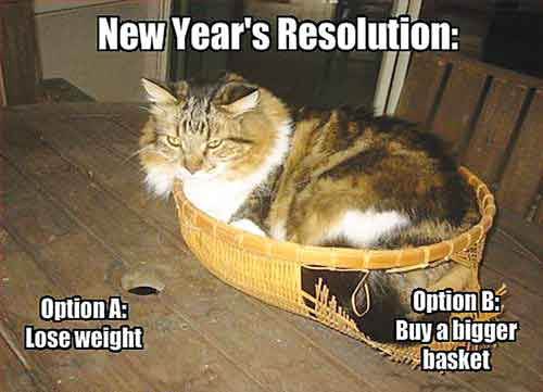 NEW YEARS RESOLUTION FOR DOGS