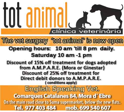 tot animal clinica veterinaria mora